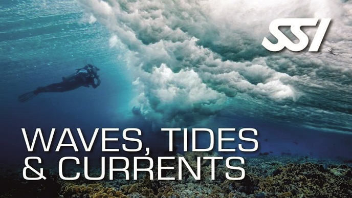 Waves Tides & Currents